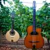 RCB Guitar & Mando Only